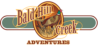 Baldhill Creek Adventures, Logo